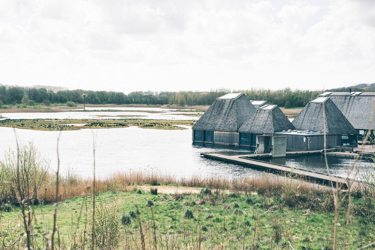 wedding venue - Brockholes Nature Reserve